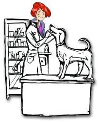 consulta veterinaria